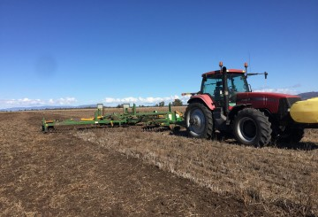 12m (40ft) Kelly Diamond Disc Chain Harrows