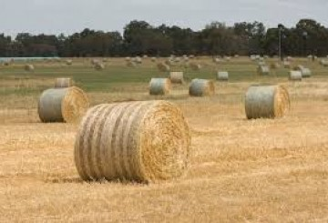 Hay Balers - Square 8x4x3, Round 4x4/4x3 and small square