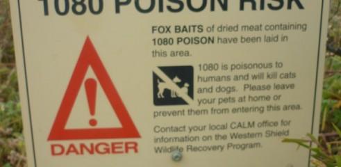 1080 baiting 1