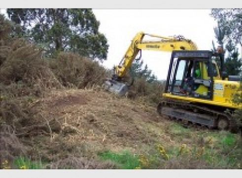 25T Excavator w/Groomer or Tree Grab 2