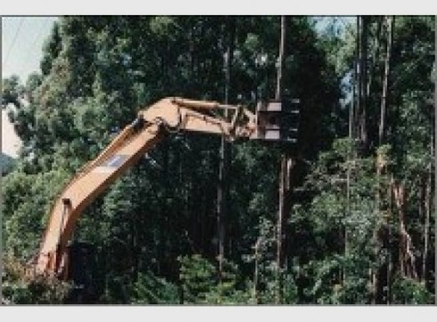 25T Excavator w/Groomer or Tree Grab 3