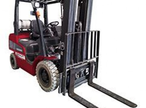 2.5t Gas Forklift w/Container Mast