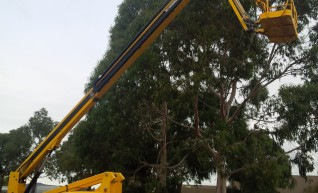80ft knuckle boom 1