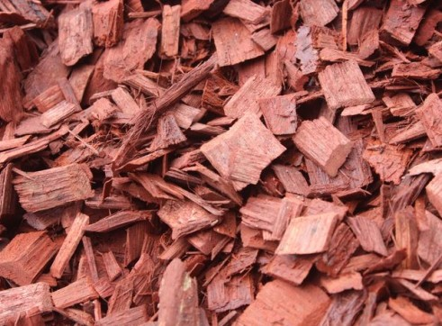 Aussie Red Chip Bark 2