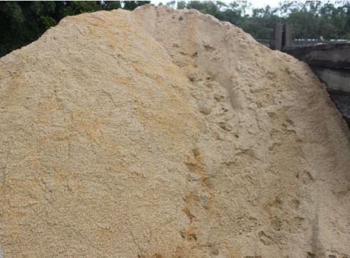 Bed Sand 1