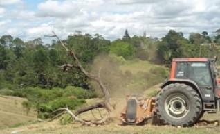 Berti ECF 250 Mulcher, Forestry  1