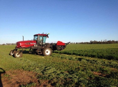 Corowa Direct Drill & Windrowing 3