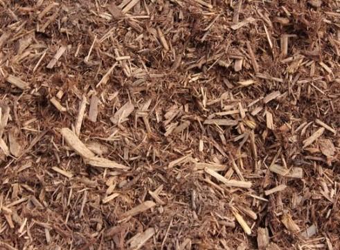 Cypress Blend 1