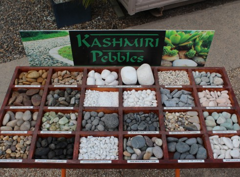 Exotic Pebbles Imported 1