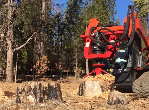 Fecon Forestry Attachments: Mulchers, Stump Grinders, Tree Shears 8