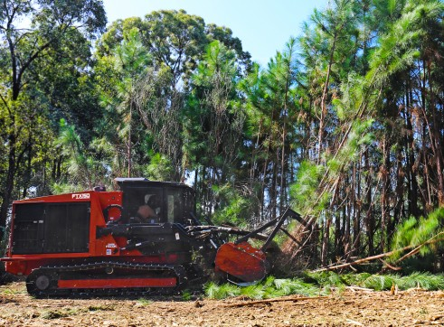 FECON FTX150 COMPACT MULCHING TRACTOR WITH MULCHER 5