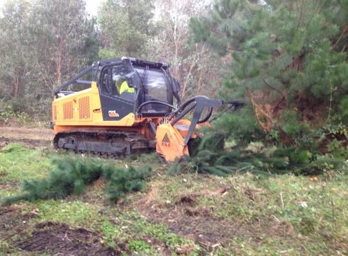 Forest Mulcher 200HP 2