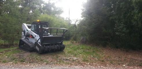 Forestry Mulching 1