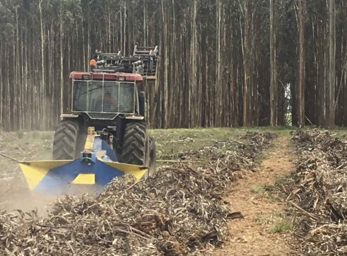 Forestry Ploughs 7