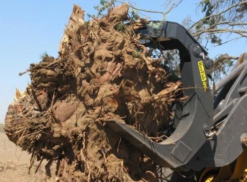 Hardwood Log Grab 3