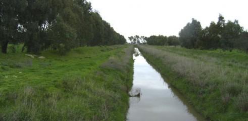 Irrigation Channels  1