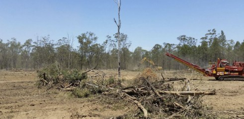 Land Clearing - Horizontal Grinders & Tracked Mulchers 3