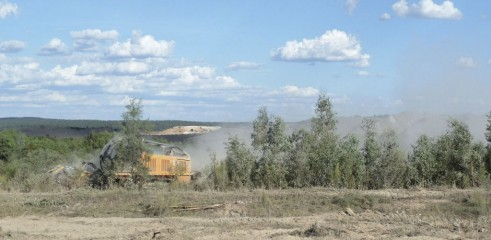 Land Clearing with 450HP Forestry Mulcher 2