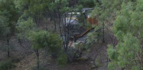 Land Clearing with 450HP Forestry Mulcher 6