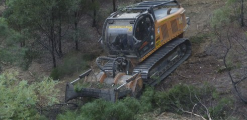 Land Clearing with 450HP Forestry Mulcher 7