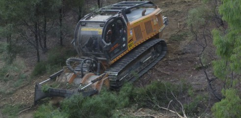 Land Clearing with 450HP Forestry Mulcher 8