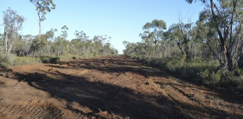 Land Clearing with Forestry Mulcher 2