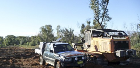 Land Clearing with Forestry Mulcher 3