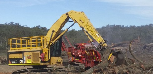 Land Clearing with Tracked Mulcher 1