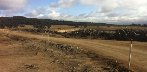 Land Clearing with Tracked Mulcher 4