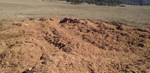 Land Clearing with Tracked Mulcher 6