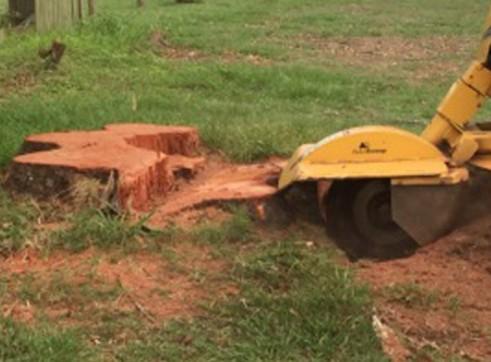 Large 4WD Stump Grinder 852 1
