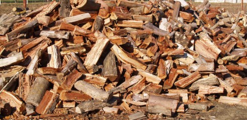 Mulch and Firewood sales 1