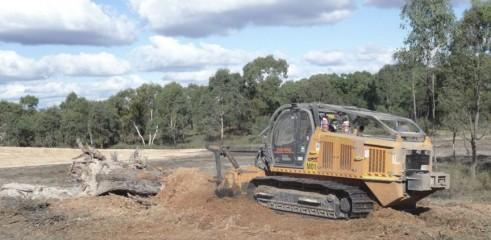Mulching Large Trees - Land Clearing 1