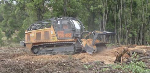 Mulching Tree - Land Clearing 4