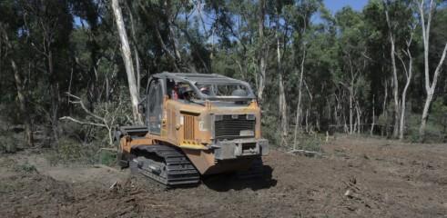 Mulching Tree with 450HP Forestry Mulcher 2