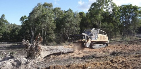 Mulching Tree with 450HP Forestry Mulcher 7