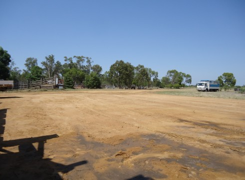 Pad | Cattle Loading Area | Mooney Station
