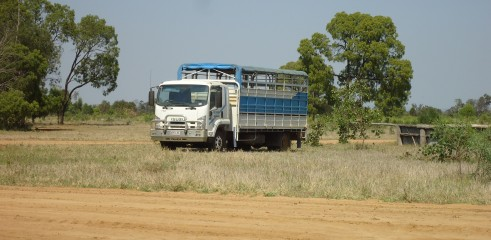 Pad | Cattle Loading Area | Mooney Station 4