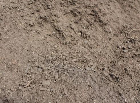 Premium Garden Soil 3