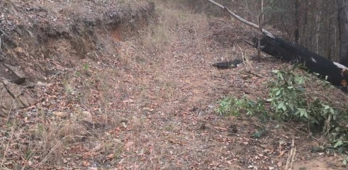 Property Access Tracks - Dirt Roads 2
