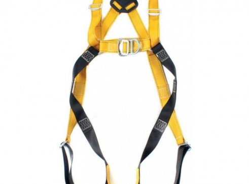 Safety Harness With Lanyard 1