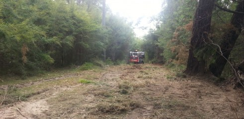 Scrub clearing (forestry mower) 2
