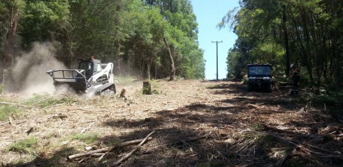 Scrub clearing (forestry mower) 4