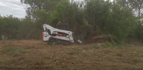 Scrub clearing (forestry mower) 5