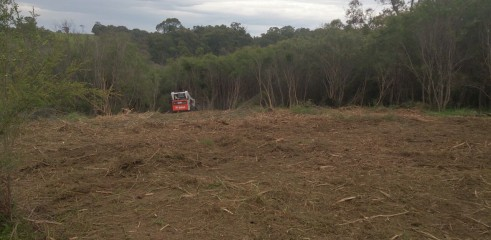 Scrub clearing (forestry mower) 7