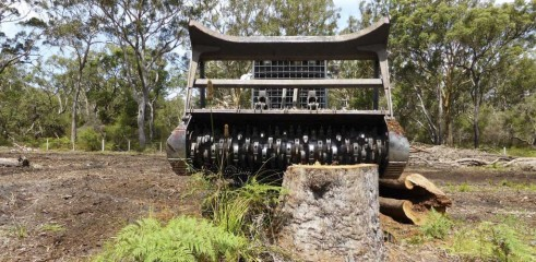 Stump Grinding with 550HP Tracked Forestry Mulcher 1
