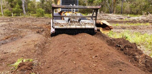 Stump Grinding with 550HP Tracked Forestry Mulcher 2