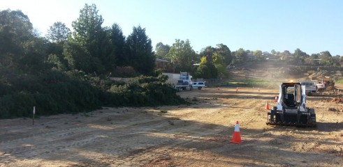 Tree Chipping 4