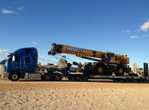 Tri low loader 1