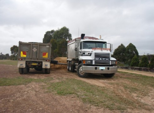 Truck & Dog Tipper Combination 1